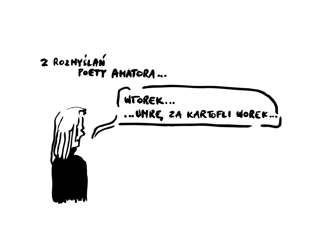 Z rozmyślań poety amatora