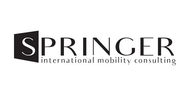 projekty logotypow springer